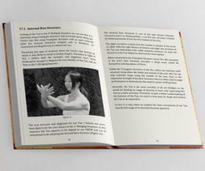 Excerpt from Wing Chun Sil Nim Tao by Siukee Wan